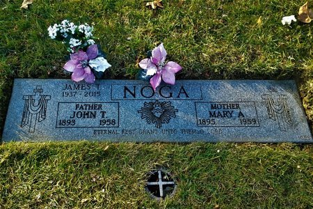 NOGA, MARY ANN - Cuyahoga County, Ohio | MARY ANN NOGA - Ohio Gravestone Photos