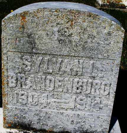 BRANDENBURG, SYLVAN L. - Darke County, Ohio | SYLVAN L. BRANDENBURG - Ohio Gravestone Photos