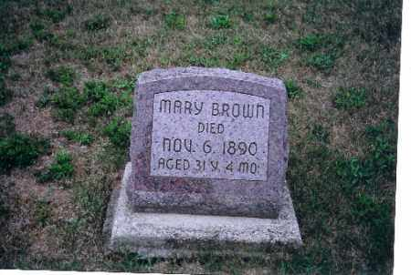 BROWN, MARY - Darke County, Ohio | MARY BROWN - Ohio Gravestone Photos