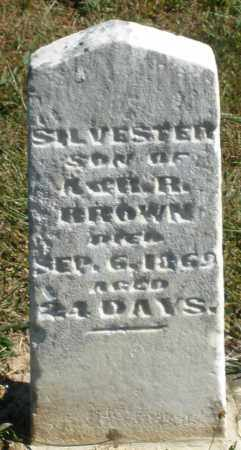 BROWN, SILVESTER - Darke County, Ohio | SILVESTER BROWN - Ohio Gravestone Photos