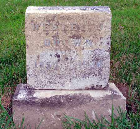 BROWN, WESLEY J. - Darke County, Ohio | WESLEY J. BROWN - Ohio Gravestone Photos