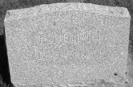 BURNS, H.J. - Darke County, Ohio | H.J. BURNS - Ohio Gravestone Photos