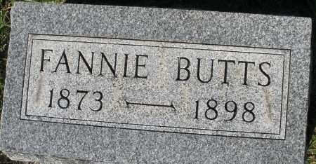 BUTTS, FANNIE - Darke County, Ohio | FANNIE BUTTS - Ohio Gravestone Photos