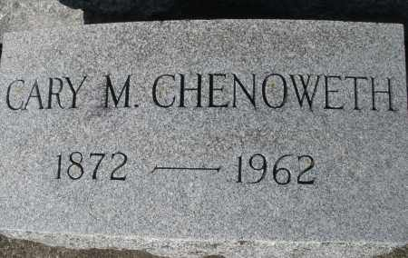 CHENOWETH, CARY M. - Darke County, Ohio | CARY M. CHENOWETH - Ohio Gravestone Photos
