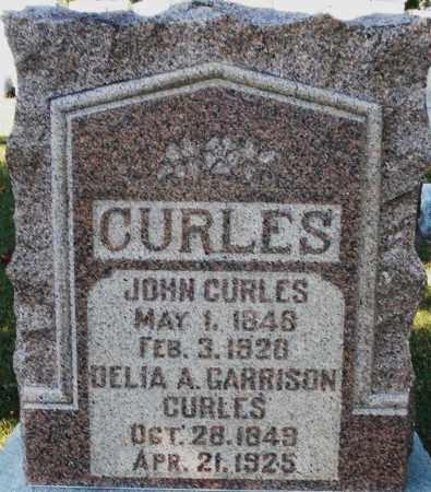 CURLES, DELIA A. - Darke County, Ohio | DELIA A. CURLES - Ohio Gravestone Photos