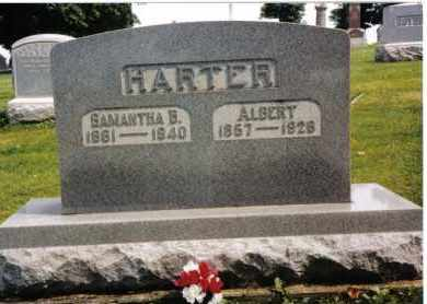HARTER, ALBERT - Darke County, Ohio | ALBERT HARTER - Ohio Gravestone Photos