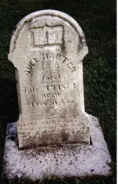 HARTER, ABEL - Darke County, Ohio   ABEL HARTER - Ohio Gravestone Photos