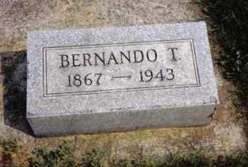 HARTER, BERNANDO T. - Darke County, Ohio | BERNANDO T. HARTER - Ohio Gravestone Photos