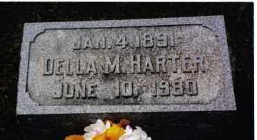 HARTER, DELLA M. - Darke County, Ohio | DELLA M. HARTER - Ohio Gravestone Photos