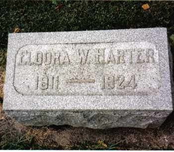 HARTER, ELDORA W. - Darke County, Ohio | ELDORA W. HARTER - Ohio Gravestone Photos