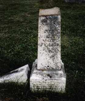 HARTER, JOHN B. - Darke County, Ohio | JOHN B. HARTER - Ohio Gravestone Photos