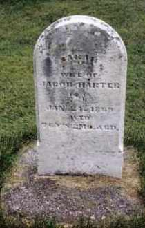 HARTER, SARAH - Darke County, Ohio | SARAH HARTER - Ohio Gravestone Photos