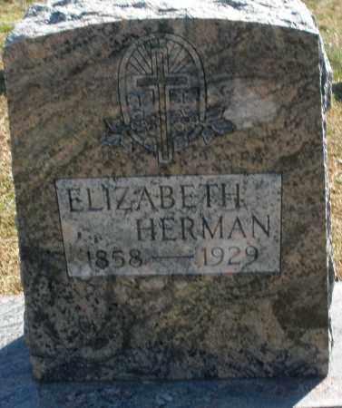 HERMAN, ELIZABETH - Darke County, Ohio | ELIZABETH HERMAN - Ohio Gravestone Photos