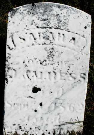 HESS, SARAH - Darke County, Ohio | SARAH HESS - Ohio Gravestone Photos