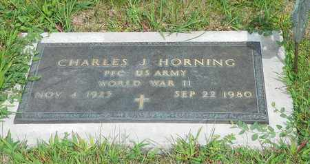 HORNING, CHARLES J. - Darke County, Ohio | CHARLES J. HORNING - Ohio Gravestone Photos