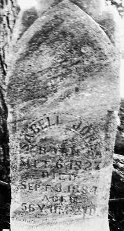 JONES, ISABELL - Darke County, Ohio | ISABELL JONES - Ohio Gravestone Photos