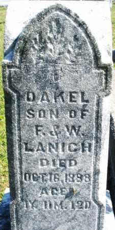 LANICH, DAKEL - Darke County, Ohio | DAKEL LANICH - Ohio Gravestone Photos