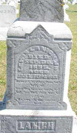 LANICH, LEWIS JR. - Darke County, Ohio | LEWIS JR. LANICH - Ohio Gravestone Photos