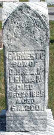 LEHMAN, EARNEST G. - Darke County, Ohio | EARNEST G. LEHMAN - Ohio Gravestone Photos