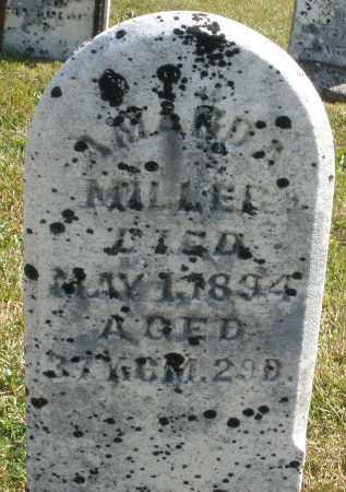 MILLER, AMANDA - Darke County, Ohio | AMANDA MILLER - Ohio Gravestone Photos