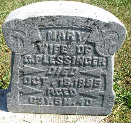 PLESSINGER, MARY - Darke County, Ohio | MARY PLESSINGER - Ohio Gravestone Photos