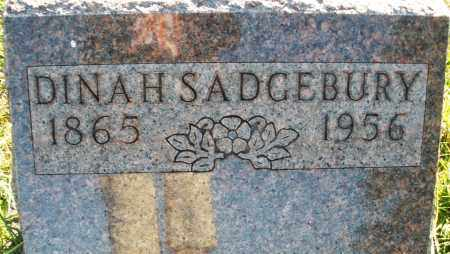 SADGEBURY, DINAH - Darke County, Ohio | DINAH SADGEBURY - Ohio Gravestone Photos