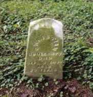 SCHLECHTY, CHRISTIAN - Darke County, Ohio | CHRISTIAN SCHLECHTY - Ohio Gravestone Photos