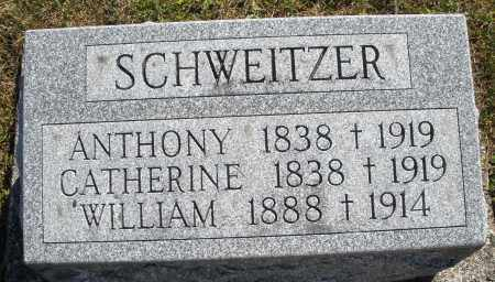 SCHWEITZER, CATHERINE - Darke County, Ohio | CATHERINE SCHWEITZER - Ohio Gravestone Photos