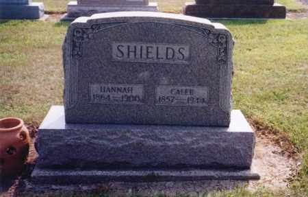 MYERS SHIELDS, HANNAH - Darke County, Ohio | HANNAH MYERS SHIELDS - Ohio Gravestone Photos