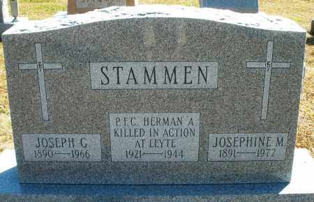 STAMMEN, HERMAN A. - Darke County, Ohio | HERMAN A. STAMMEN - Ohio Gravestone Photos