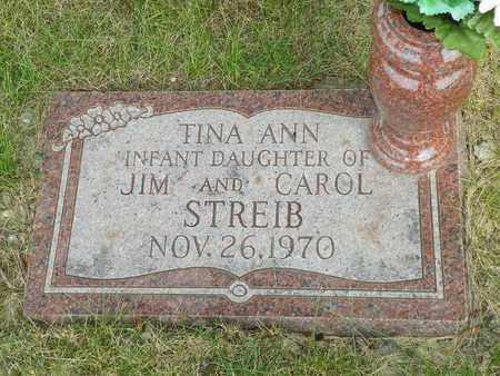 STREIB, TINA ANN - Darke County, Ohio | TINA ANN STREIB - Ohio Gravestone Photos