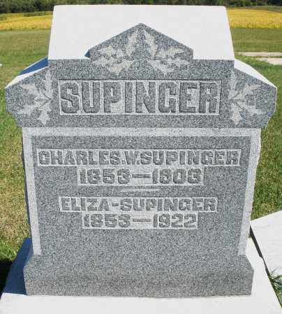 SUPINGER, ELIZABETH - Darke County, Ohio | ELIZABETH SUPINGER - Ohio Gravestone Photos
