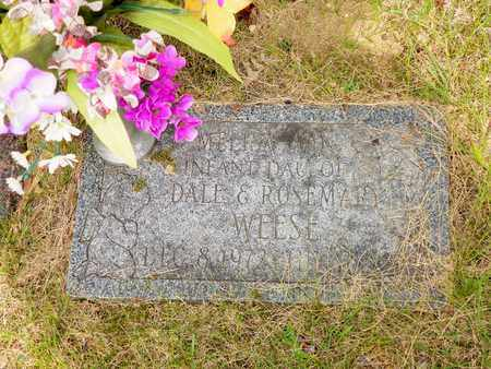 WEESE, MELISA ANN - Darke County, Ohio | MELISA ANN WEESE - Ohio Gravestone Photos