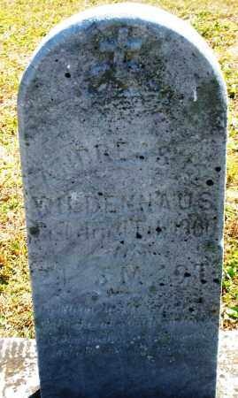 WILDENHAUS, ANDREAS - Darke County, Ohio | ANDREAS WILDENHAUS - Ohio Gravestone Photos