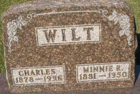 WILT, CHARLES - Darke County, Ohio | CHARLES WILT - Ohio Gravestone Photos