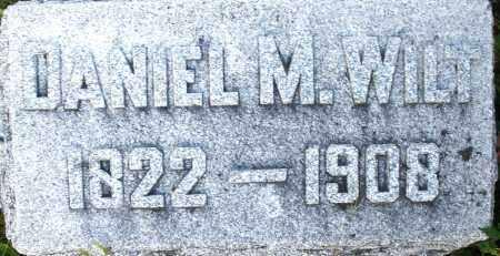 WILT, DANIEL M. - Darke County, Ohio | DANIEL M. WILT - Ohio Gravestone Photos
