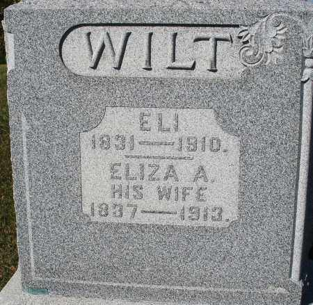 WILT, ELIZABETH A. - Darke County, Ohio | ELIZABETH A. WILT - Ohio Gravestone Photos