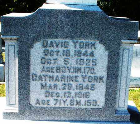 YORK, CATHARINE - Darke County, Ohio | CATHARINE YORK - Ohio Gravestone Photos