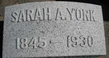 YORK, SARAH - Darke County, Ohio | SARAH YORK - Ohio Gravestone Photos