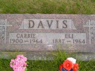 DAVIS, CARRIE - Defiance County, Ohio | CARRIE DAVIS - Ohio Gravestone Photos