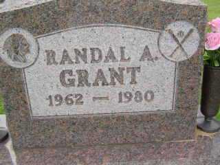 GRANT, RANDAL A - Defiance County, Ohio | RANDAL A GRANT - Ohio Gravestone Photos