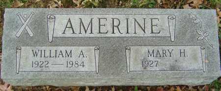 AMERINE, WILLIAM A - Delaware County, Ohio | WILLIAM A AMERINE - Ohio Gravestone Photos