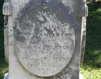 ANDERSON, ELIZABETH H. - Delaware County, Ohio | ELIZABETH H. ANDERSON - Ohio Gravestone Photos