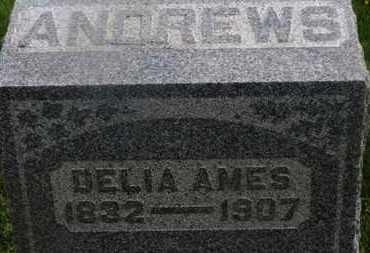 AMES ANDREWS, DELIA - Delaware County, Ohio | DELIA AMES ANDREWS - Ohio Gravestone Photos