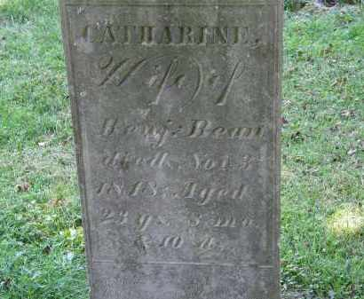 BEAN, CATHARINE - Delaware County, Ohio | CATHARINE BEAN - Ohio Gravestone Photos