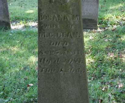BEAN, ROSANA - Delaware County, Ohio | ROSANA BEAN - Ohio Gravestone Photos