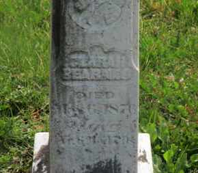BEARNES, CLARA H. - Delaware County, Ohio | CLARA H. BEARNES - Ohio Gravestone Photos