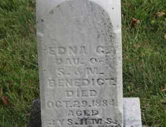 BENEDICT, S. - Delaware County, Ohio | S. BENEDICT - Ohio Gravestone Photos