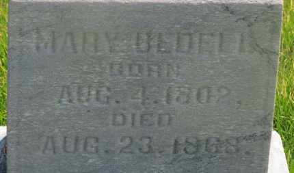 BIDELL, MARY - Delaware County, Ohio | MARY BIDELL - Ohio Gravestone Photos