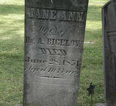 BIGELOW, JANE ANN - Delaware County, Ohio | JANE ANN BIGELOW - Ohio Gravestone Photos